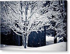 Let It Snow Acrylic Print by Maggie Terlecki