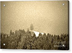 Acrylic Print featuring the photograph Let It Snow - Winter In Switzerland by Susanne Van Hulst