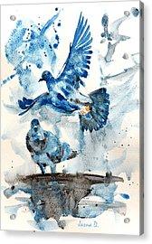 Let Me Free Acrylic Print by Jasna Dragun