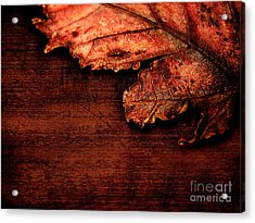 Let Me Hold You...  Acrylic Print