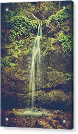 Acrylic Print featuring the photograph Let Me Live Again by Laurie Search