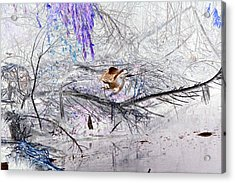 Let Your Mind Fly Away Acrylic Print