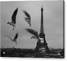 Acrylic Print featuring the photograph Let Your Spirit Fly  by Danica Radman