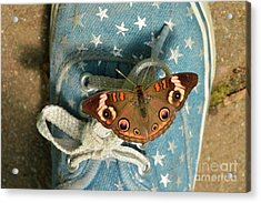 Let Your Spirit Fly Free- Butterfly Nature Art Acrylic Print