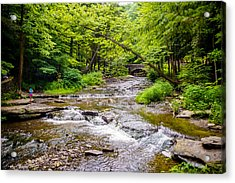 Letchworth Creek Acrylic Print by Carlos Ruiz