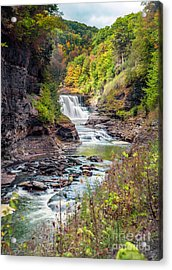 Letchworth Lower Falls In Autumn Acrylic Print