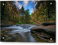 Letchworth's Wolf Creek  Acrylic Print by Rick Berk