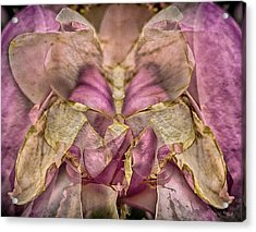 Lether Butterfly Or Not Acrylic Print