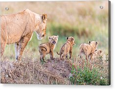 Let's Go Mom Acrylic Print
