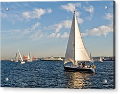 Lets Sail Acrylic Print by Tom Dowd