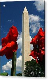 Liberty Acrylic Print by Mitch Cat