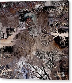 Acrylic Print featuring the digital art Life In A Bush Of Ghosts by Silva Wischeropp