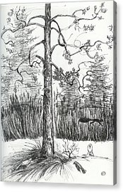 Acrylic Print featuring the drawing Life In The Forest by Anna  Duyunova