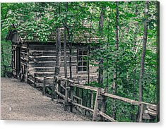 Acrylic Print featuring the photograph Life In The Ozarks by Annette Hugen