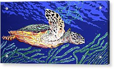 Life In The Slow Lane Acrylic Print by Debbie Chamberlin