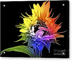 Life Is Like A Rainbow ... Acrylic Print