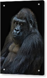 Life Is Not Allways Funny Acrylic Print by Joachim G Pinkawa