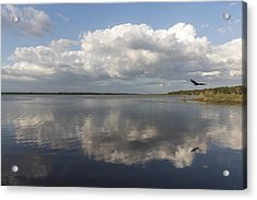 Lifting The Weight Acrylic Print by Jon Glaser