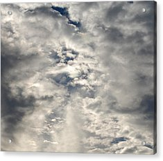 Light And Dark Acrylic Print by Jean Booth