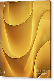 Light And Form I Acrylic Print by Elizabeth Hoskinson