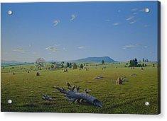 Light And Freedom Acrylic Print by Tuco Amalfi