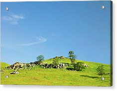 Acrylic Print featuring the photograph Light And Shadows - Spring In Central California by Ram Vasudev