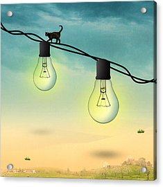Light Bulb Acrylic Print by Mark Ashkenazi