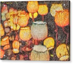 Light Flowers - Pa Acrylic Print