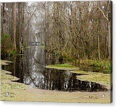 Light Fog On The Swamp Acrylic Print