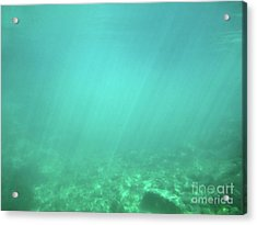 Acrylic Print featuring the photograph Light In The Water by Francesca Mackenney