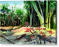 Light In The Woods Acrylic Print by Anil Nene