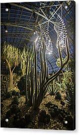 Light Installation In The Desert Acrylic Print by Sven Brogren