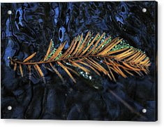 Light Music  Acrylic Print by Deborah Gallaway