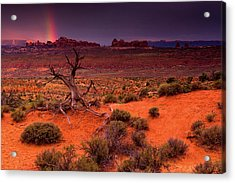 Light Of The Desert Acrylic Print by John De Bord