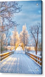 Light Of Winter Acrylic Print