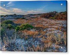 Light On The Dunes Acrylic Print by Bill Roberts