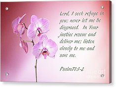 Acrylic Print featuring the photograph Light Pink Orchid Psalms 71 by Linda Phelps
