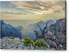 Light Seeks The Depths Of Grand Canyon Acrylic Print