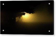 Light Through The Tree Acrylic Print