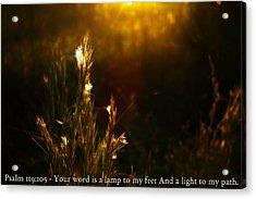 Light To My Path Acrylic Print by Roberto Aloi