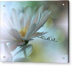 ..light Touch... Acrylic Print by Juliana Nan