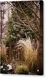 Light Winter Snow Acrylic Print by Mick Anderson