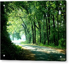 Lighted Path Acrylic Print by Lynn Reid