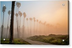 Acrylic Print featuring the photograph Lighter Longer by Sean Foster