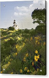Lighthouse Daisies Acrylic Print by Sharon Foster