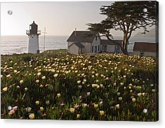 Lighthouse With A Blanket Of Wildflowers Acrylic Print by George Oze