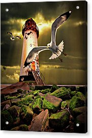 Lighthouse With Seagulls Acrylic Print