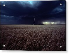 Lightning Flashes Above A Kansas Wheat Acrylic Print by Cotton Coulson