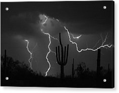 Lightning Storm Saguaro Fine Art Bw Photography Acrylic Print by James BO  Insogna