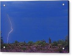 Lightning Strike In The Desert Acrylic Print by James BO  Insogna